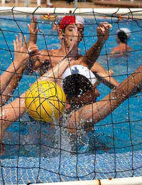 Physical Handball Rugby Swimming Muscle