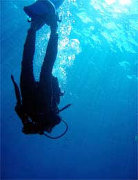 What Is Drift Diving?